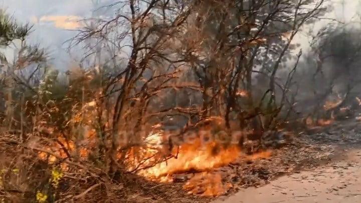 Εκτακτο: Πυρκαγιά στη Βάρη – Ισχυρές πυροσβεστικές δυνάμεις στο σημείο