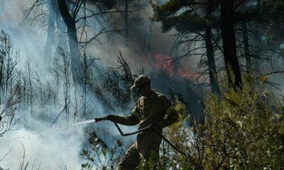 Η φωτογραφία από τις φωτιές που κάνει τον γύρο του διαδικτύου