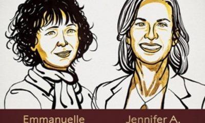 Νόμπελ Χημείας 2020: Σε δύο γυναίκες για τη συμβολή τους στη θεραπεία του καρκίνου