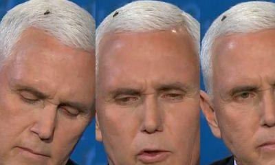 Εκλογές ΗΠΑ : Γλέντι στο Twitter με τη… μύγα που κάθισε στο κεφάλι του Πενς στο debate